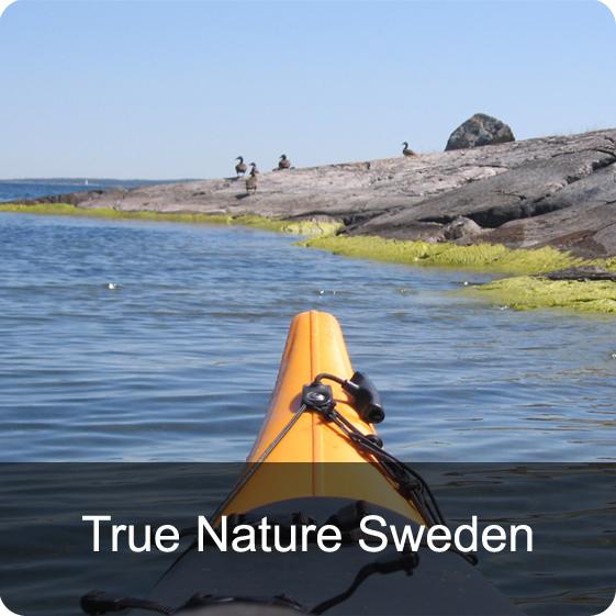 True Nature Sweden